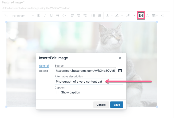 Screenshot demonstrating the user interface for image alt tag in the WYSIWYG editor
