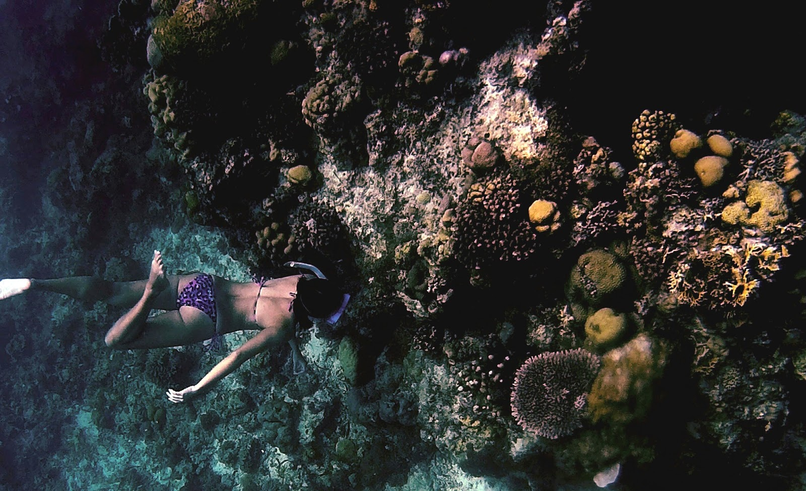 Snorkeling in Fajardo is one of the fun things to do in Puerto Rico