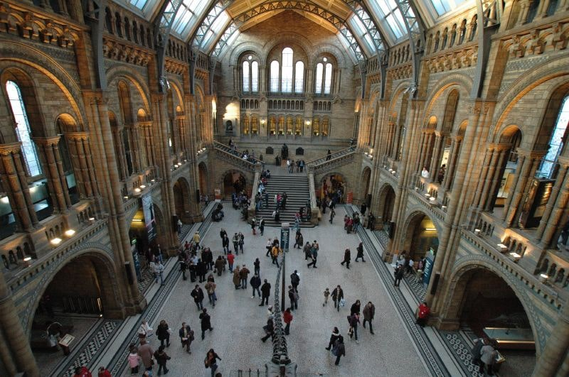 The breathtaking Natural History Museum is such a cool place to visit in London