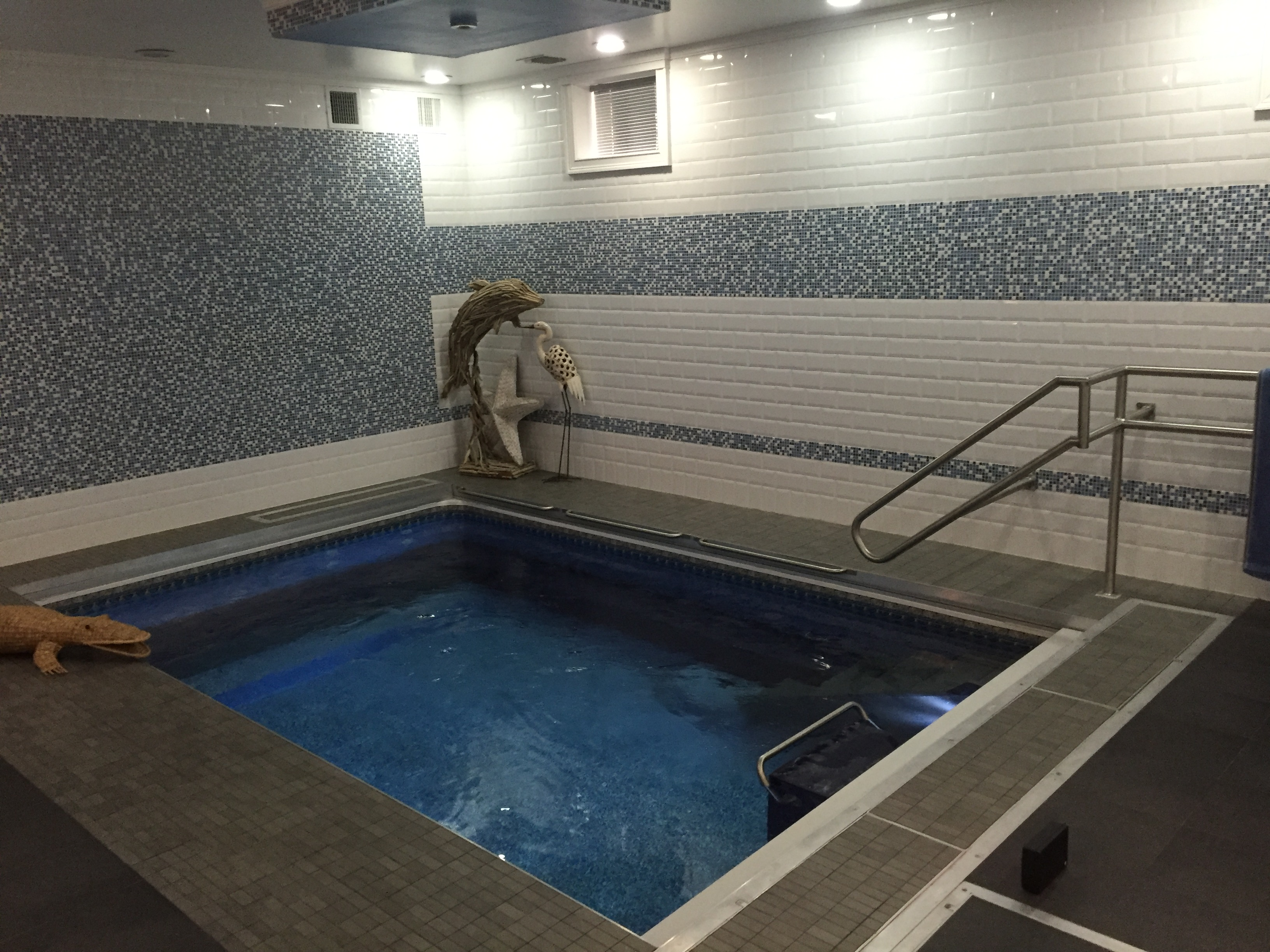 an Endless Pool used for aquatic therapy to treat cerebral palsy