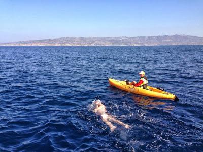 Jason Malick swimming across Catalina Channel