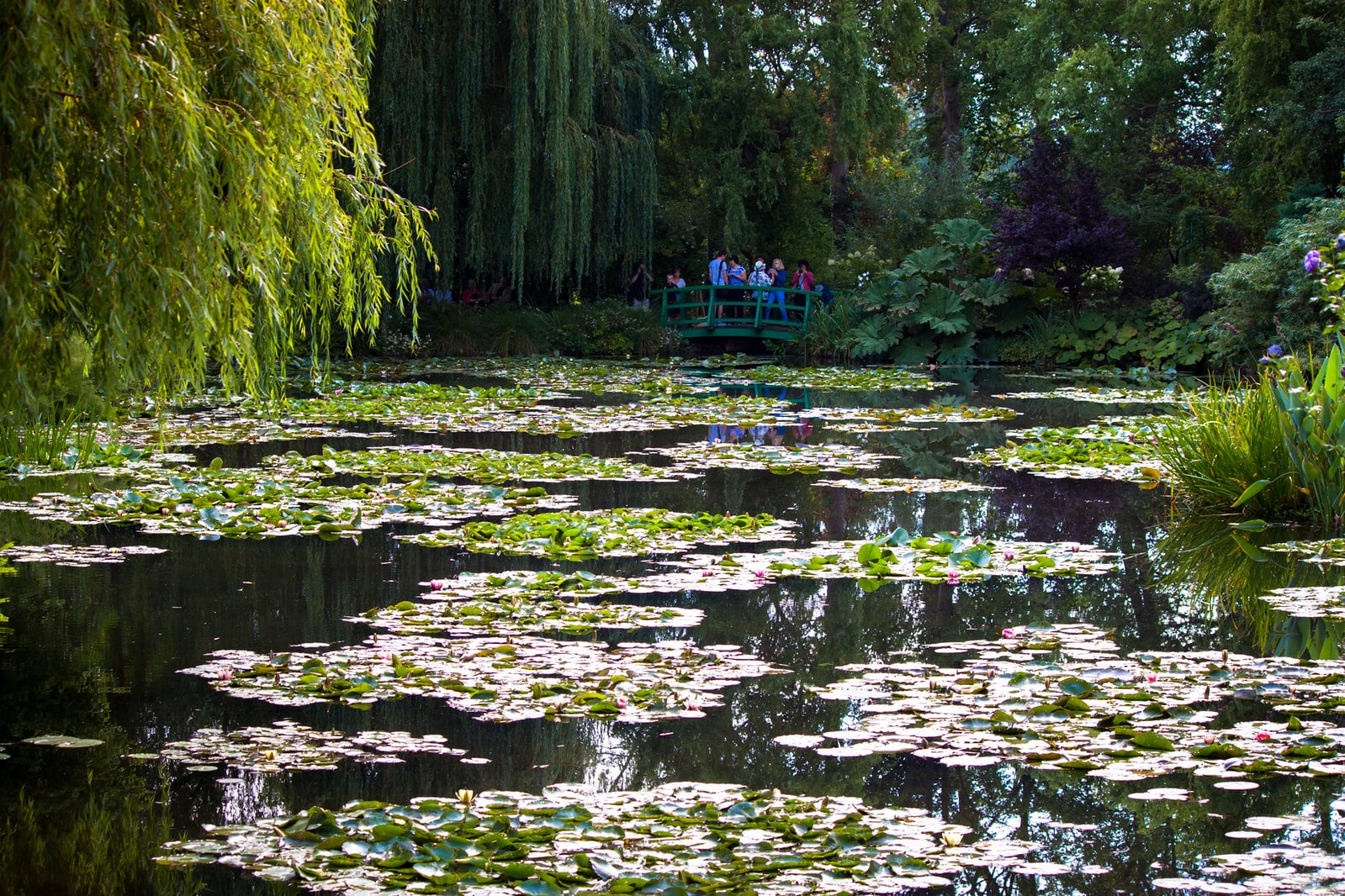 Strolling through Monet's Garden is a magnificent thing to do in France
