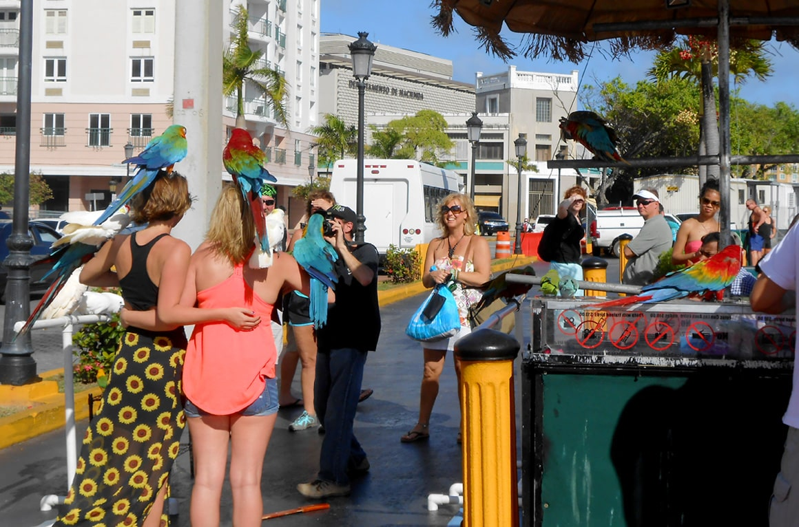 Sightseeing is easy and safe for solo travelers in Puerto RIco