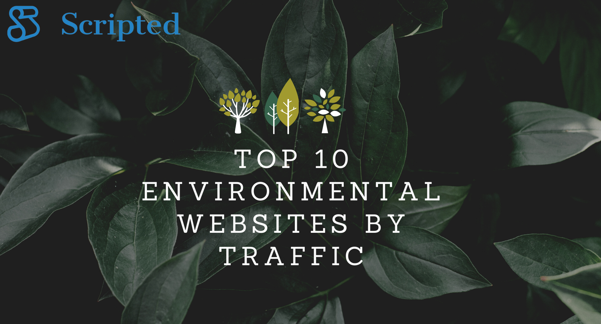 Top 10 Environmental Websites By Traffic