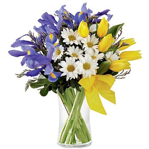 Iris yellow tulip and white daisy bouquet