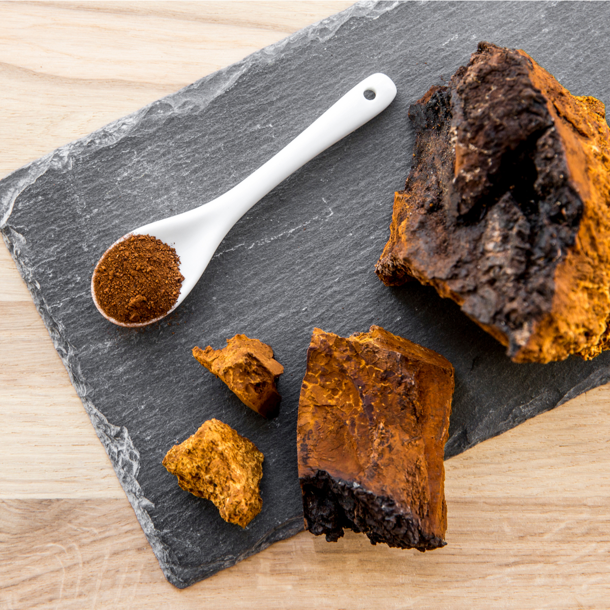 What Is Chaga, and What Does It Have To Do With Skincare?