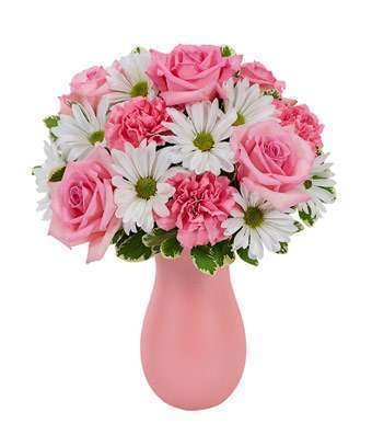 White Daisies with Pink Flowers