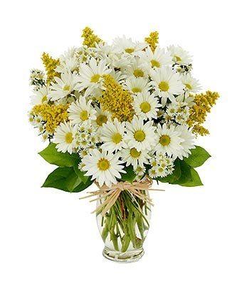 Daisy Delight Bouquet