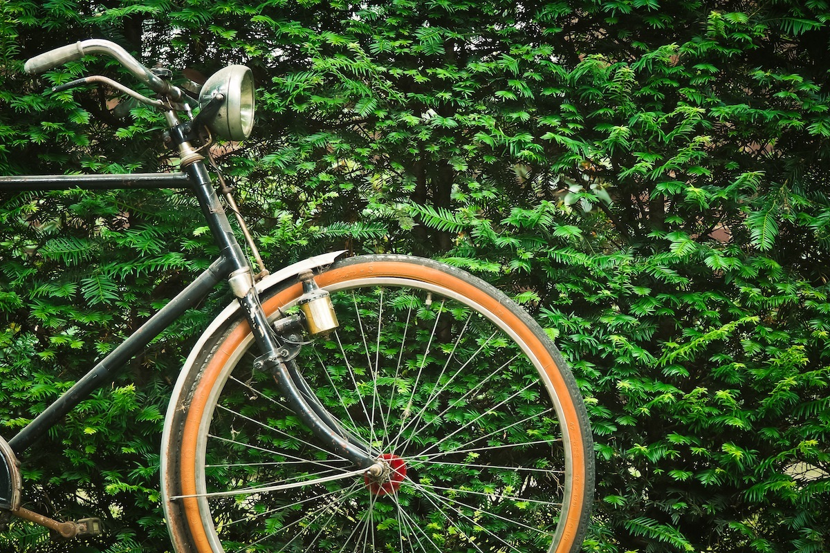 A bicycle is parked in front of a wall of ivy.