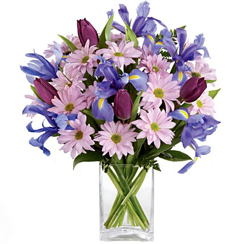 lavender daisy and iris purple tulip bouquet iris goddess answer