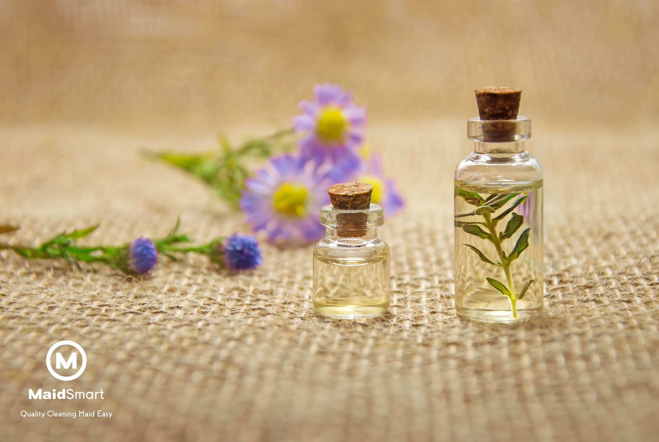 Maid Smart Blog - Scents for Selling ...