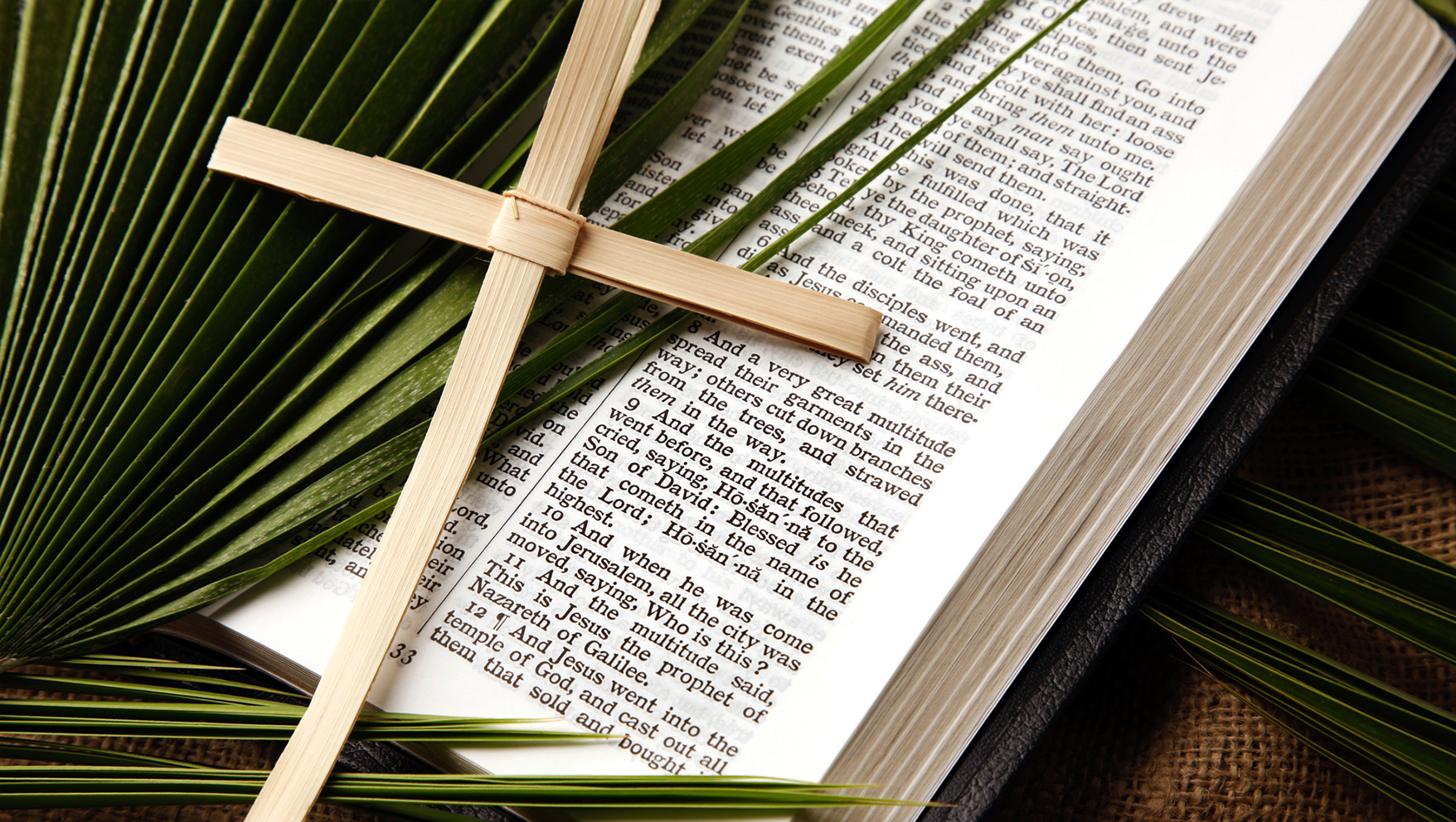 Palm Sunday: 5 Ways to Help Your Kids Understand What Really Happened