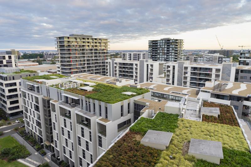 evapotranspiration-green-roof