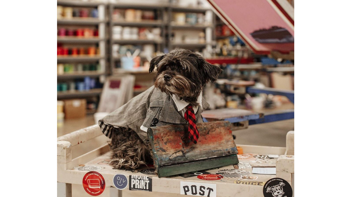 Squeegee the shop dog at Flash Flood Prints.