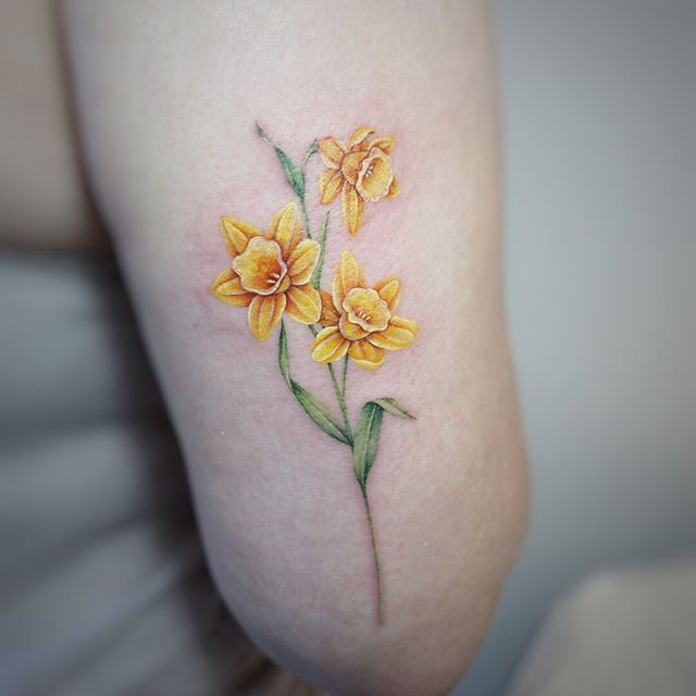 Beautiful yellow Daffodil in upper arm