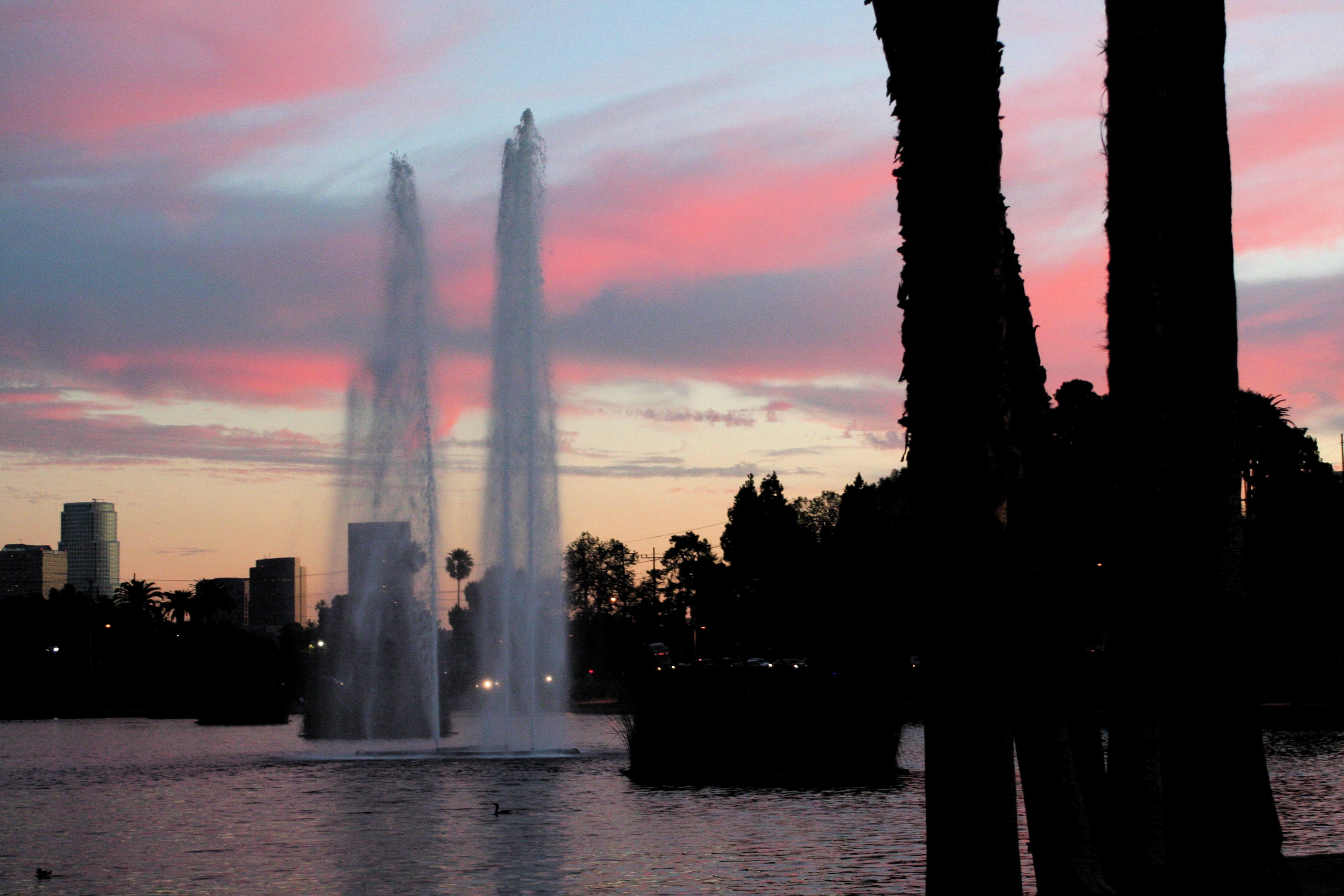 Where to stay in LA? Hip echo park has lots of soul and energy