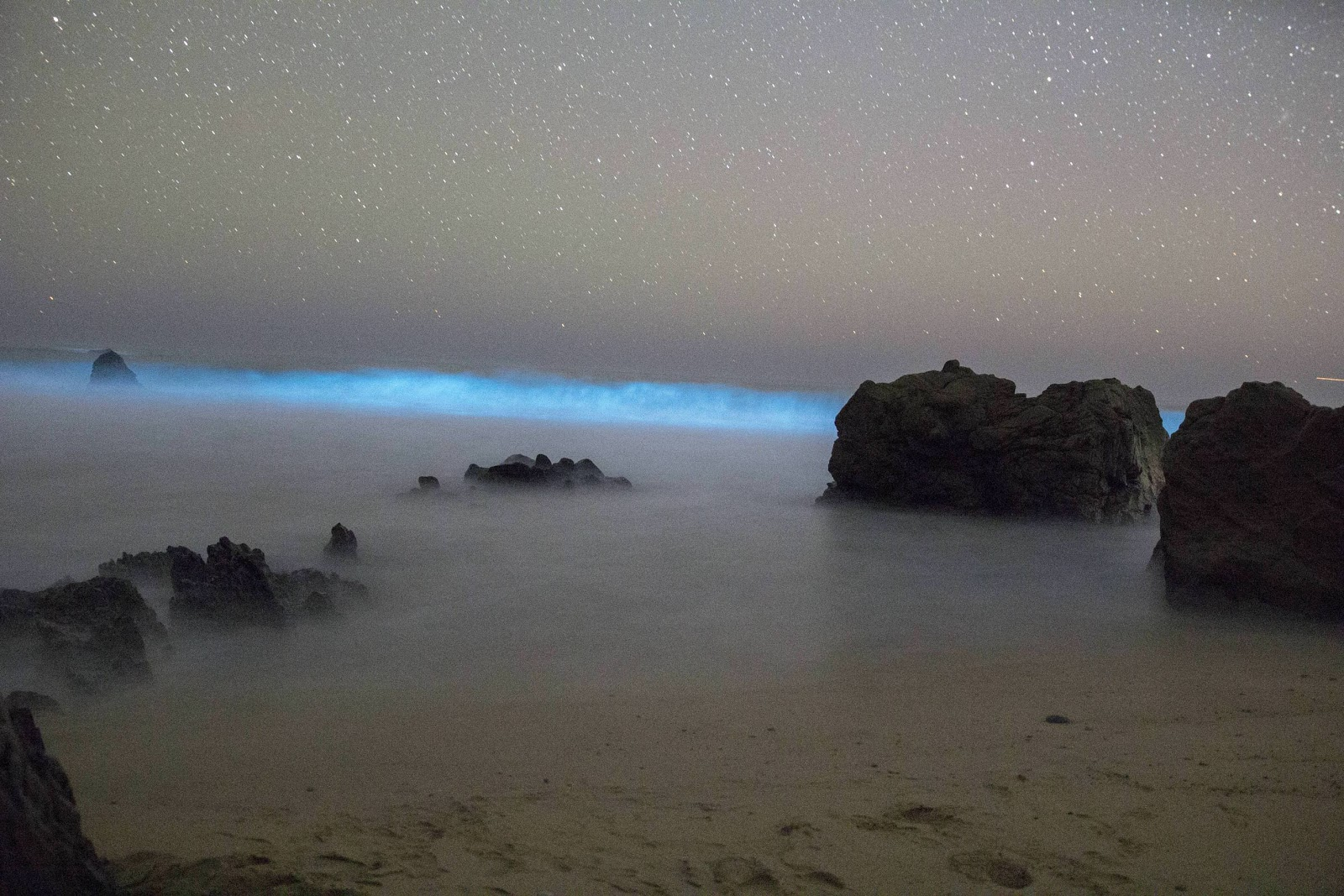 Kayaking in the bioluminescent bay is one of the fun things to do in Puerto Rico