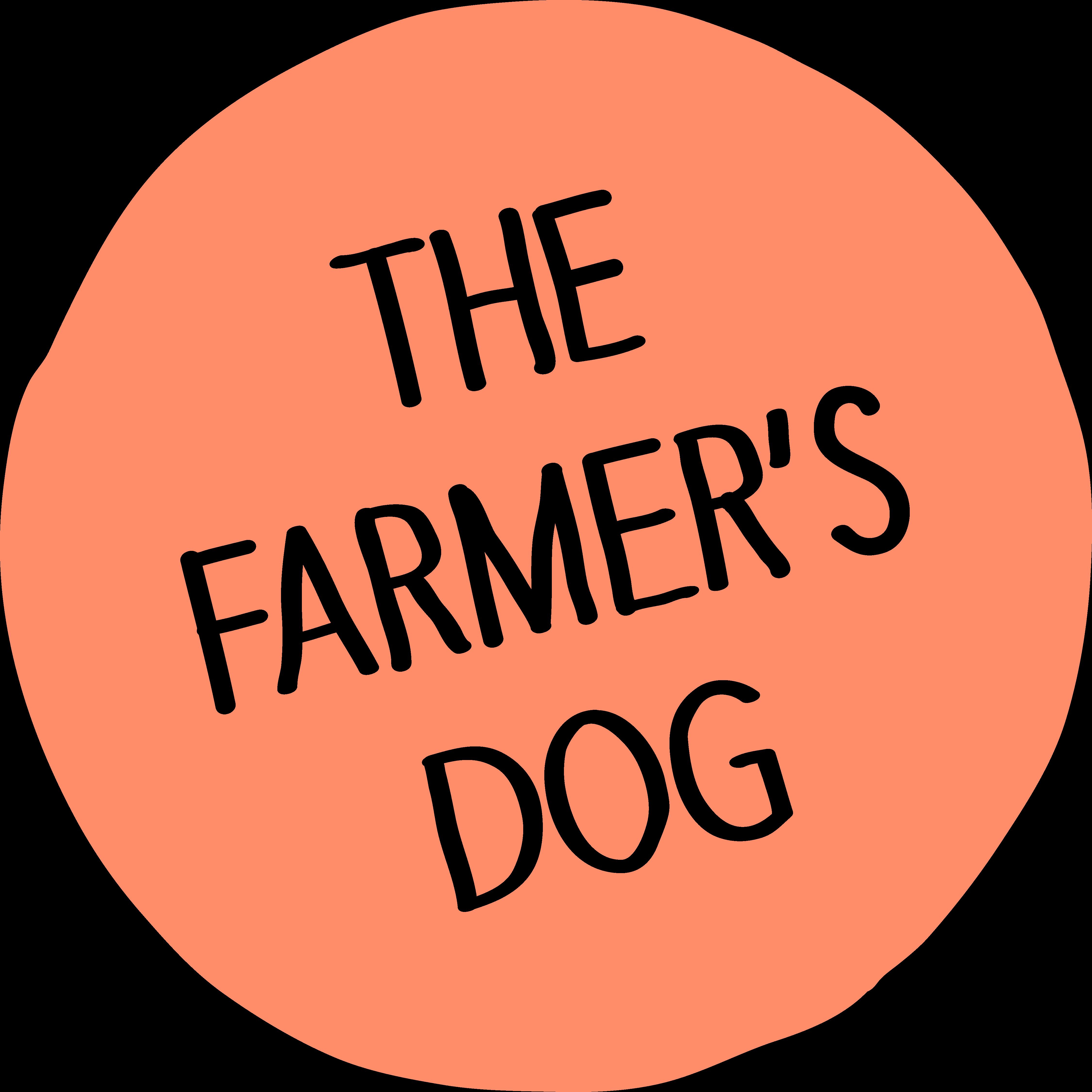 Homemade Dog Food Delivered
