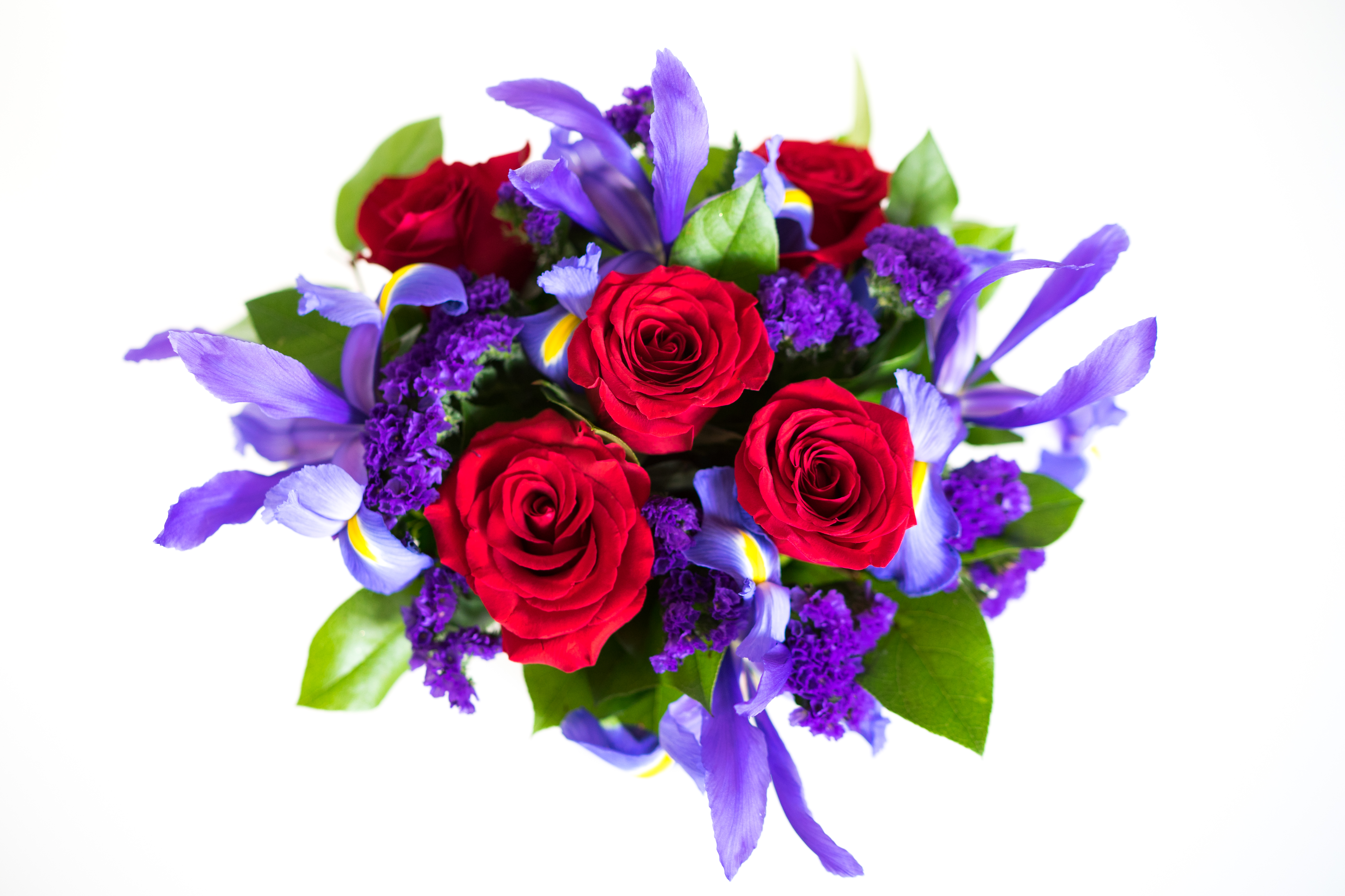 What's the best flowers for Valentines?