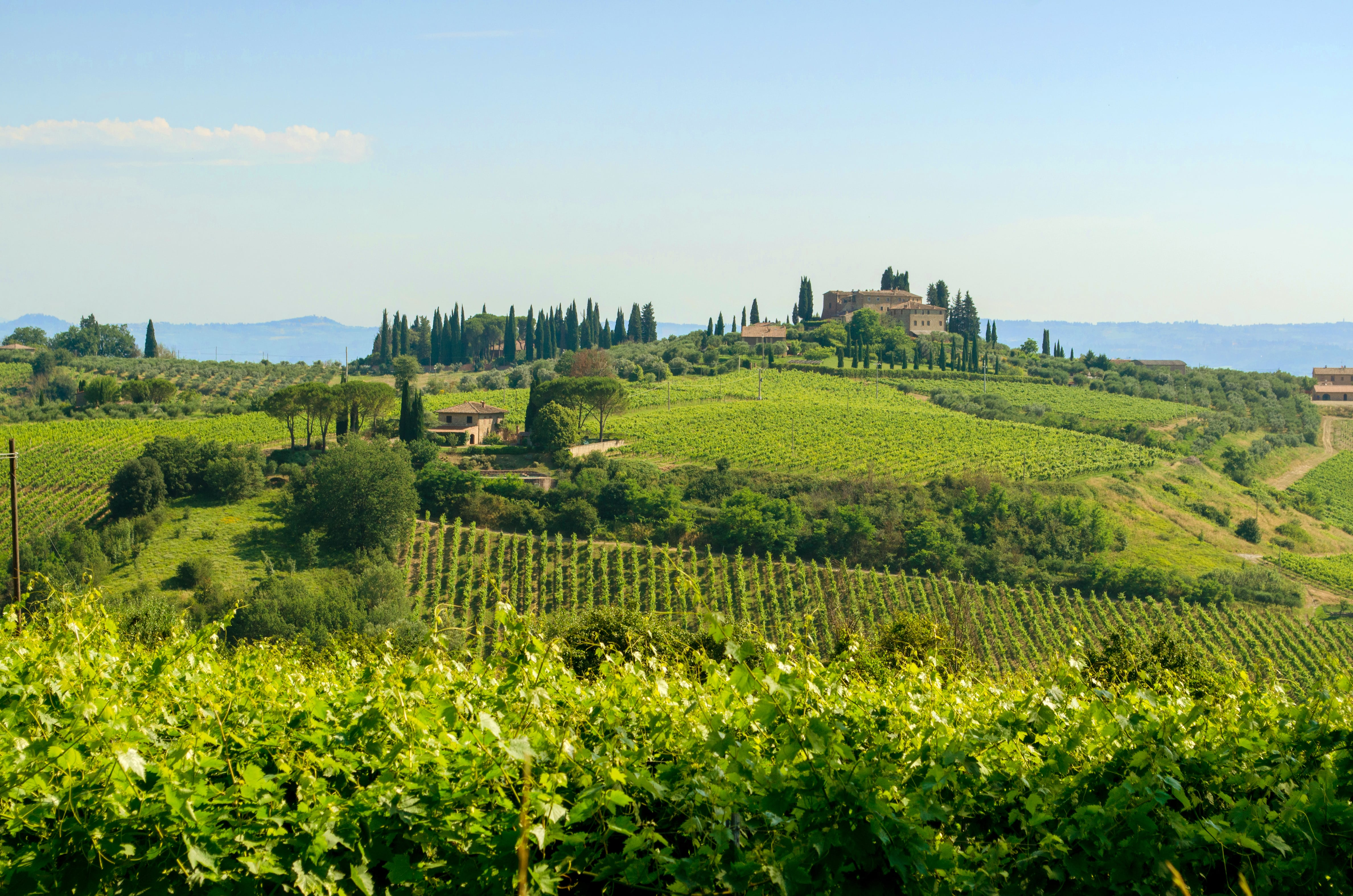 Tuscany is one of the most beautiful places to visit in Italy (especially for wine lovers!)