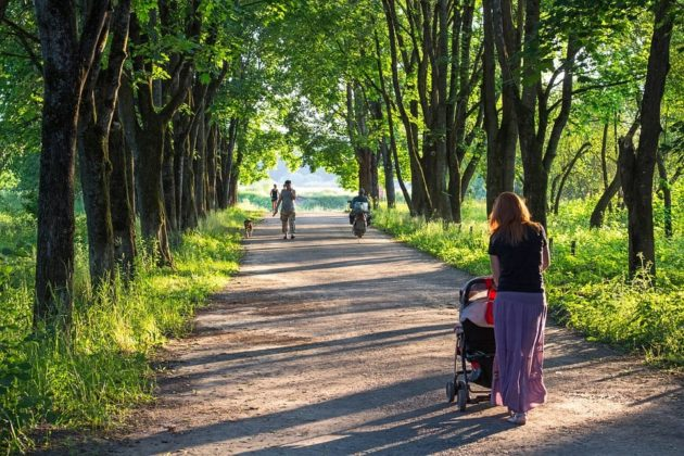mother walking through a park pushing a baby stroller