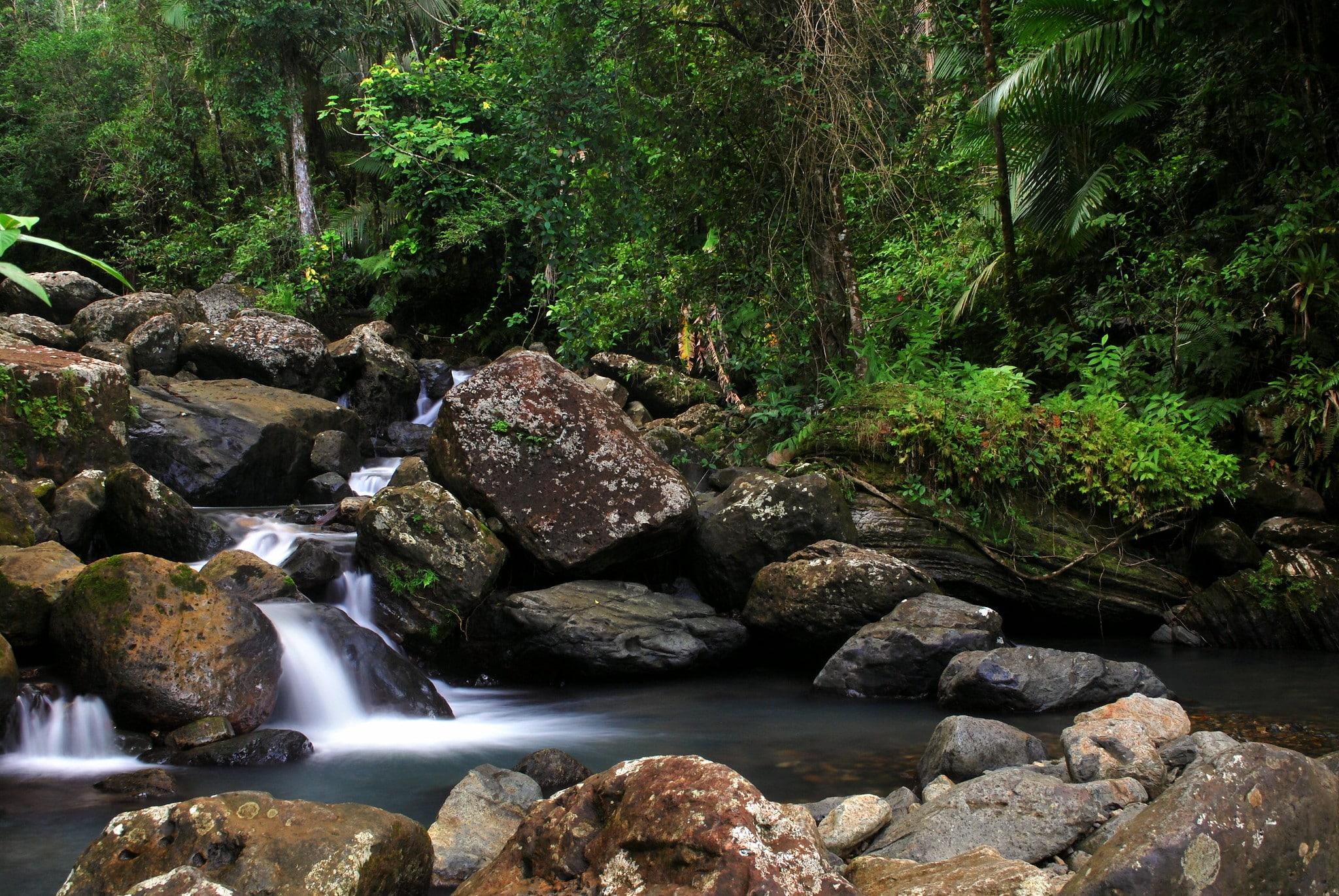 Puerto Rico's rainforest has some amazing waterfalls