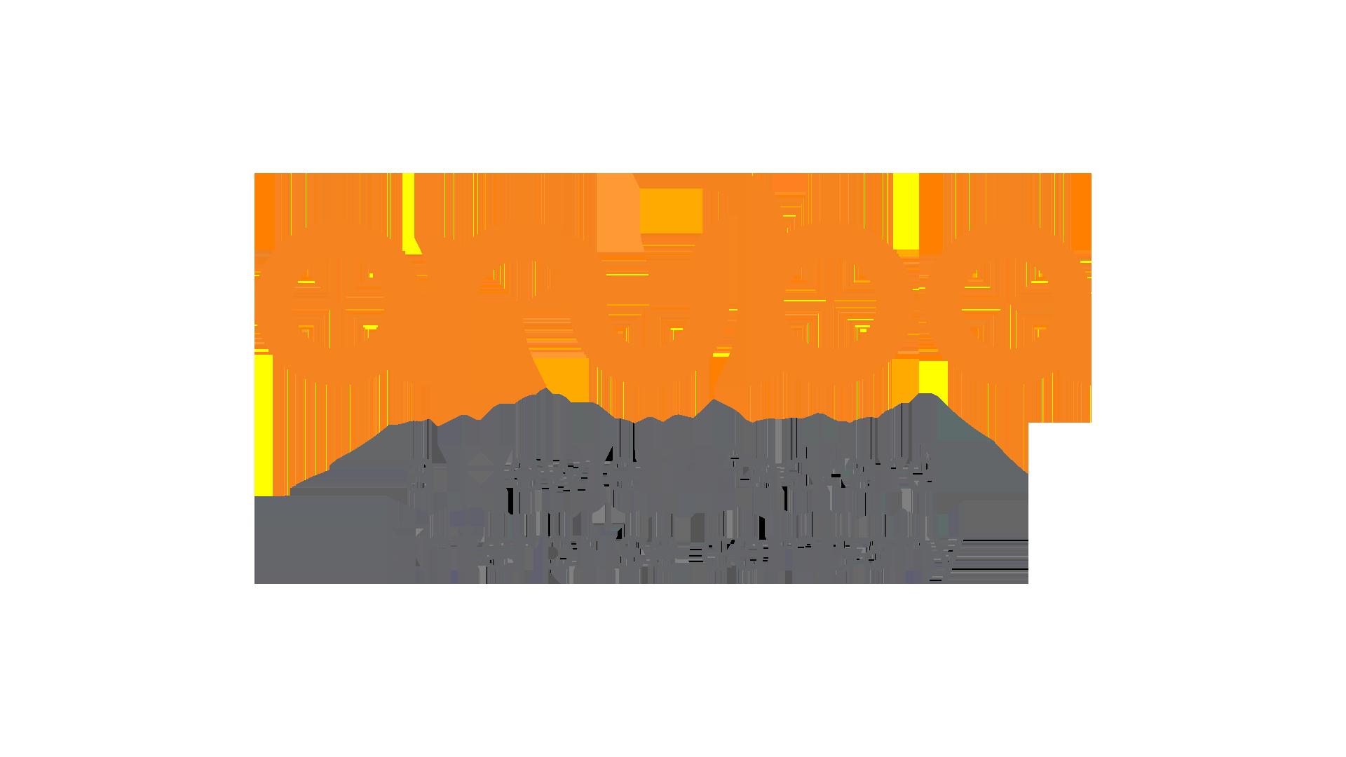 Aruba Networks (HPE)