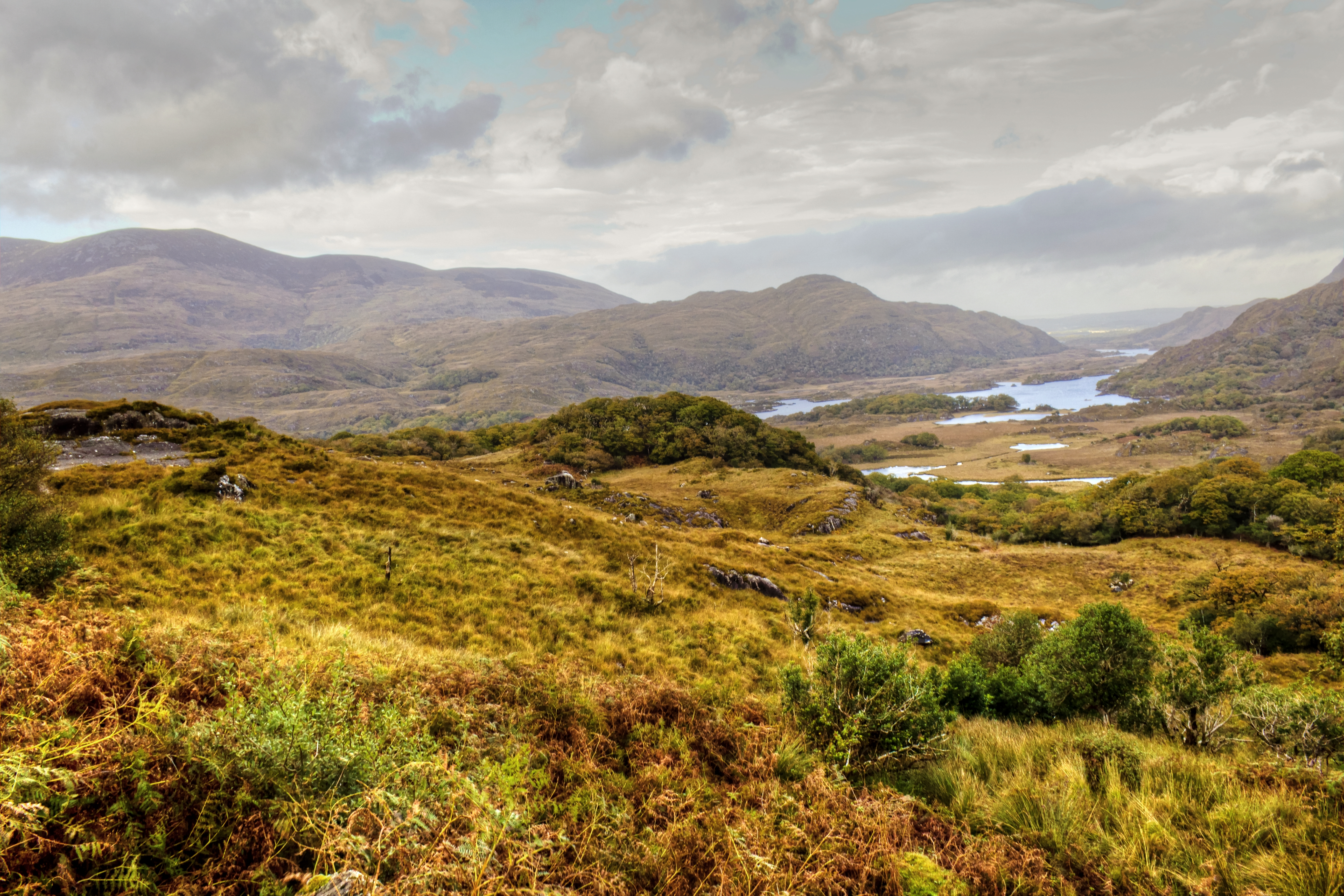 Trekking through Killarney National Park is an awesome thing to do in Ireland