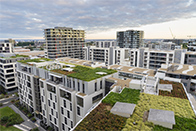 green roof function