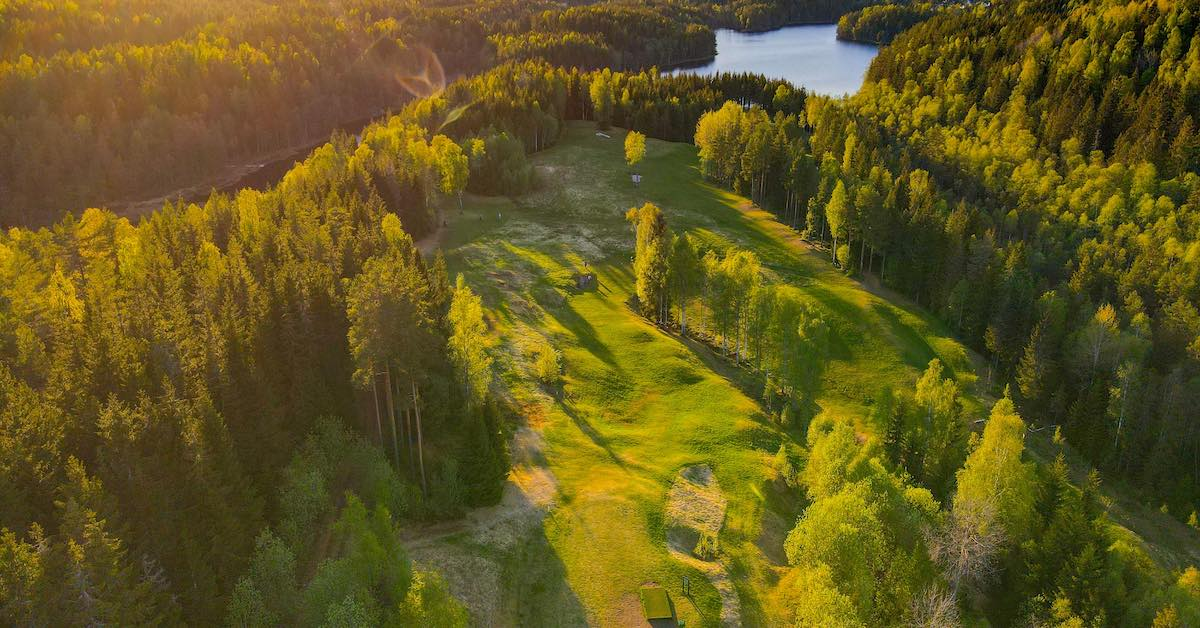 Disc golf course as seen from above with mown fairway among thick woods and water in the distance