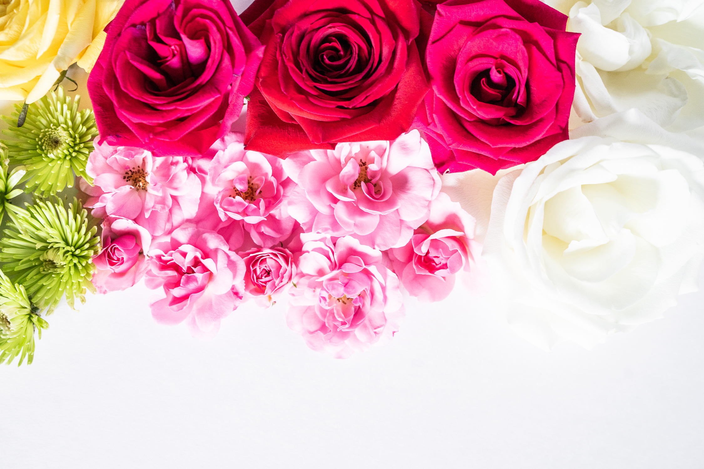 Which Flowers Symbolize Love?