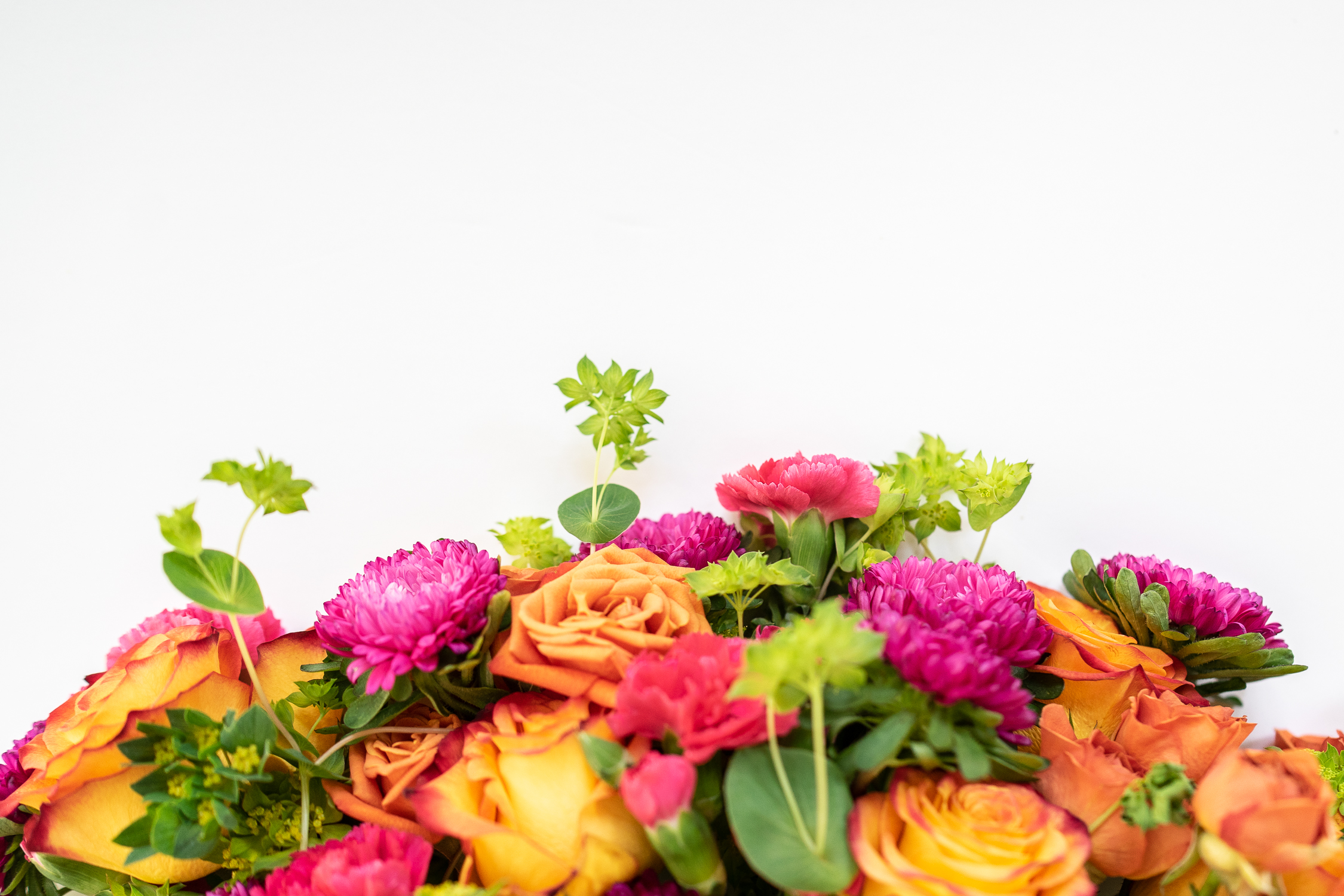 The Five Best Flower Shows in the USA