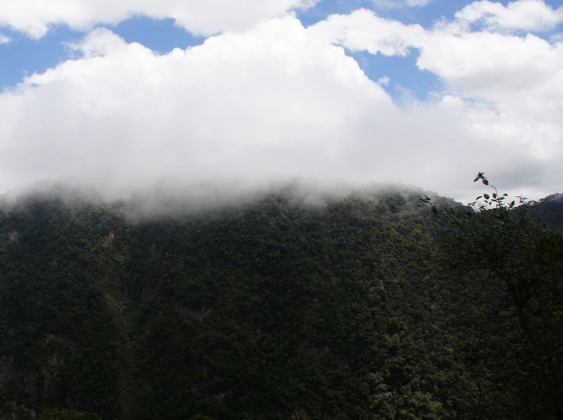 Colombia's Marvelous Cloud Forests