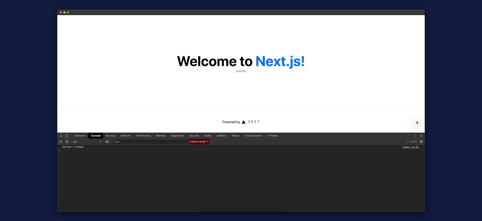 Screenshot: console view of styled Next.js app