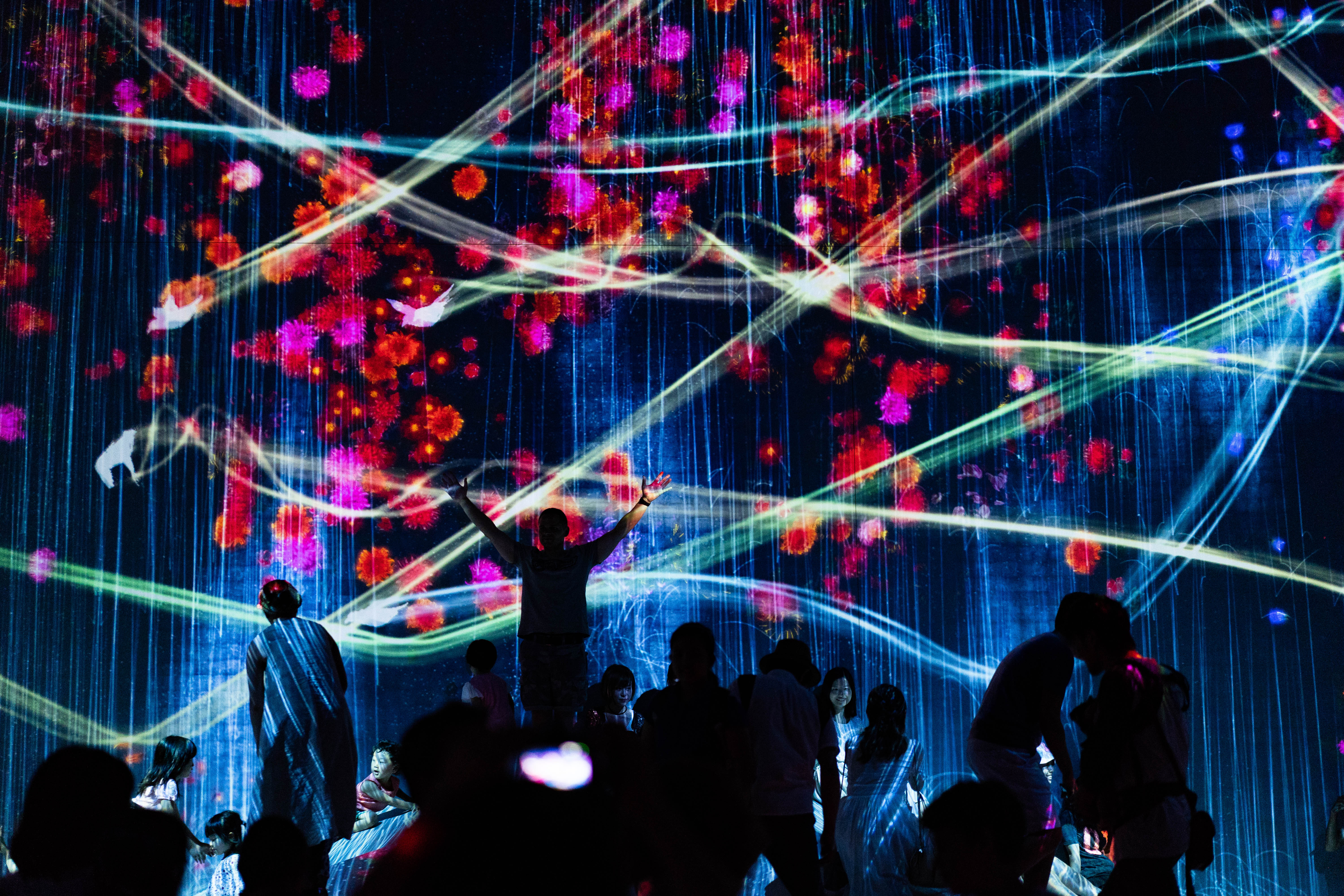 The Mori Digital Art Museum in Odaiba is one of many amazing Tokyo attractions