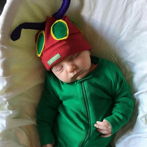 baby-caterpillar.png