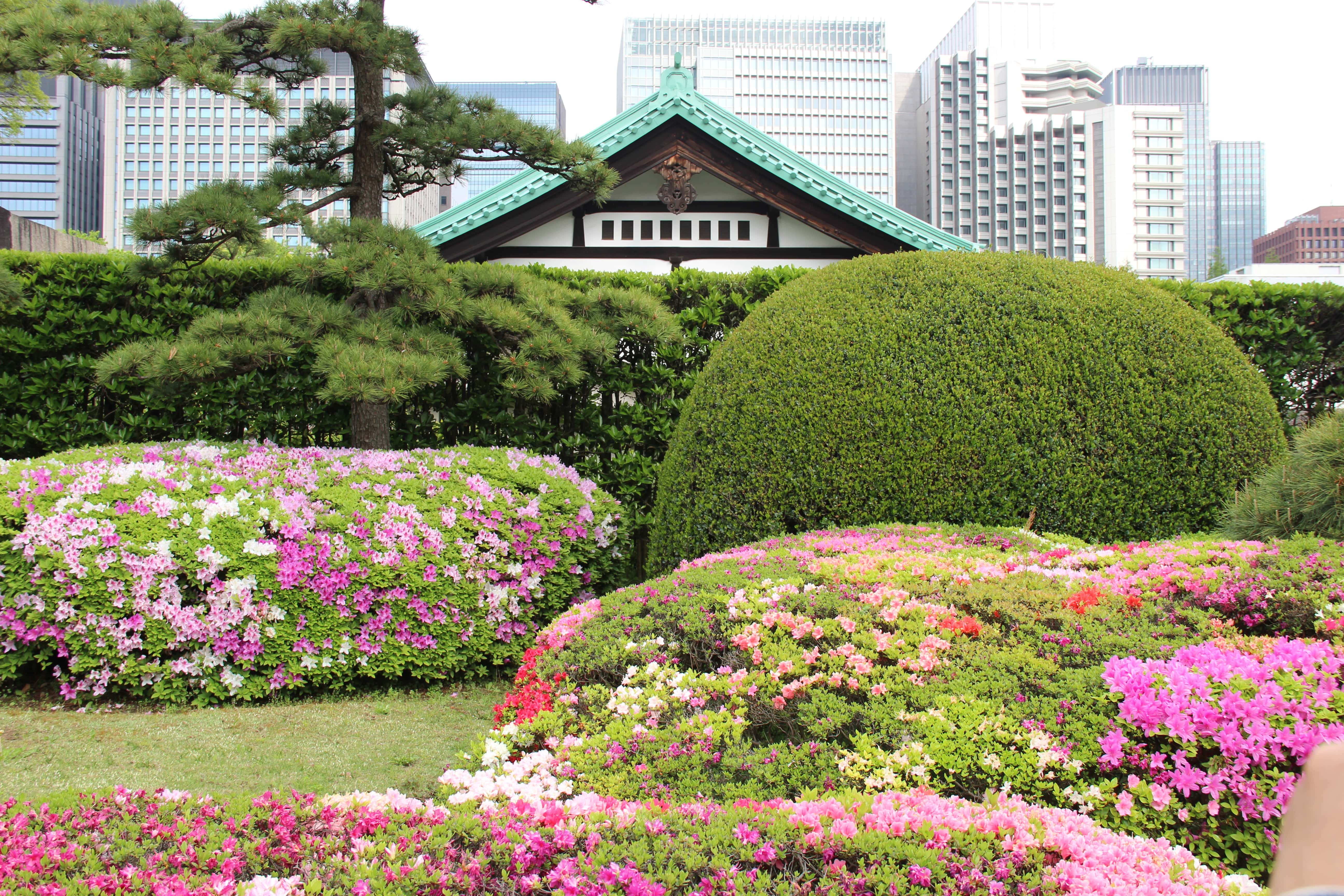 The Tokyo Imperial Gardens are a lovely spot for Tokyo sightseeing