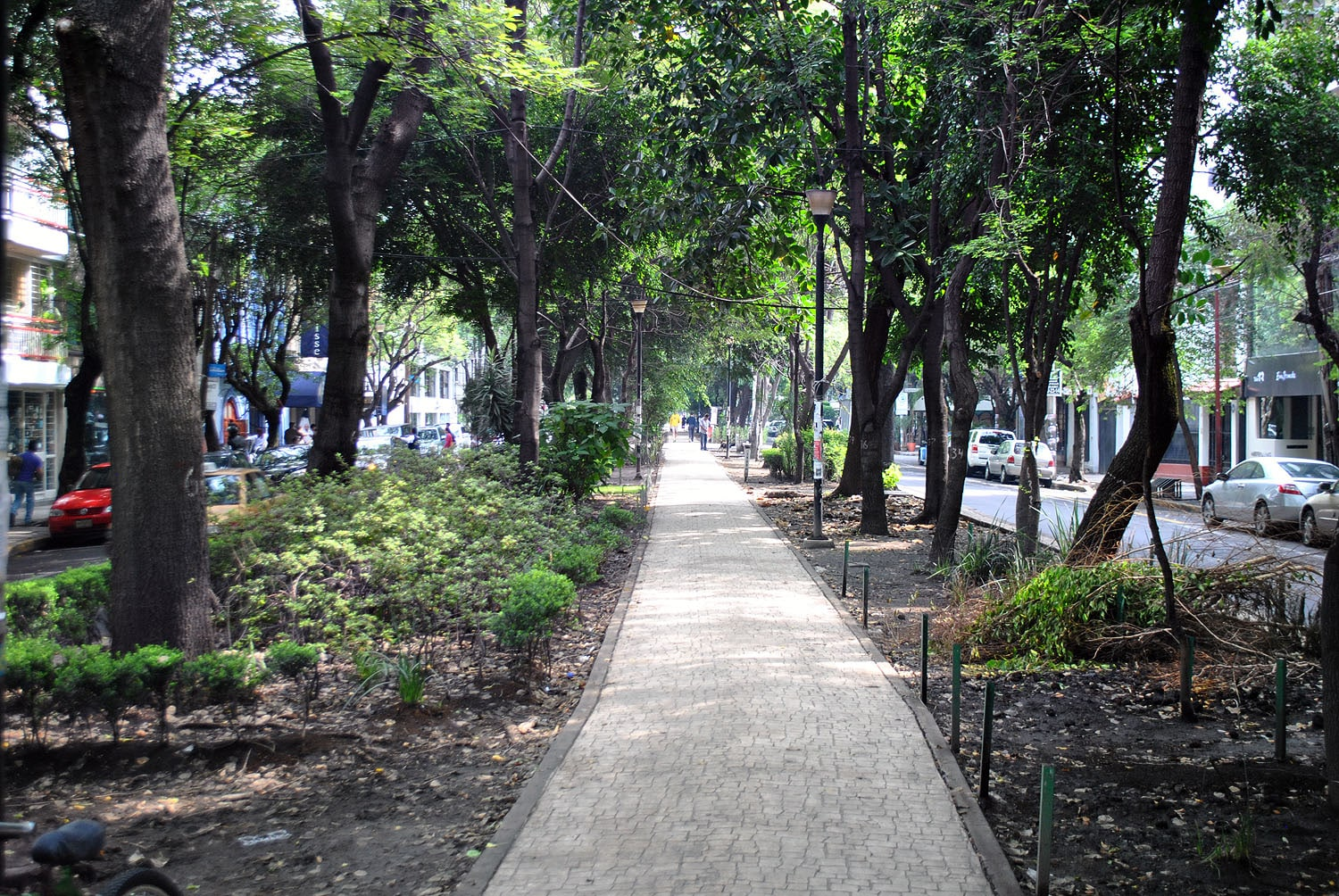 Parque Mexico is one of the best Mexico City attractions