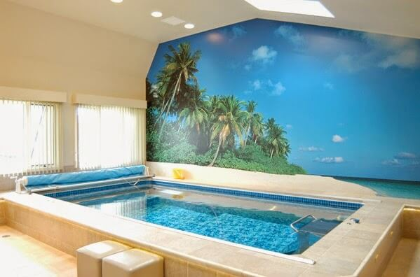A partially in-ground Endless Pools swimming machine indoors with a mural