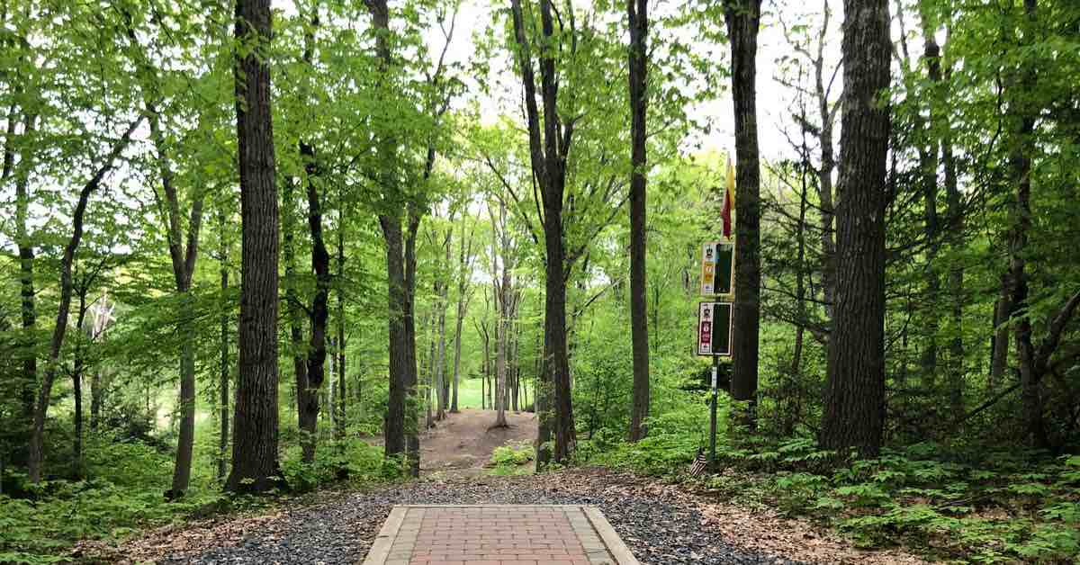 A disc golf tee pad in a tightly wooded area