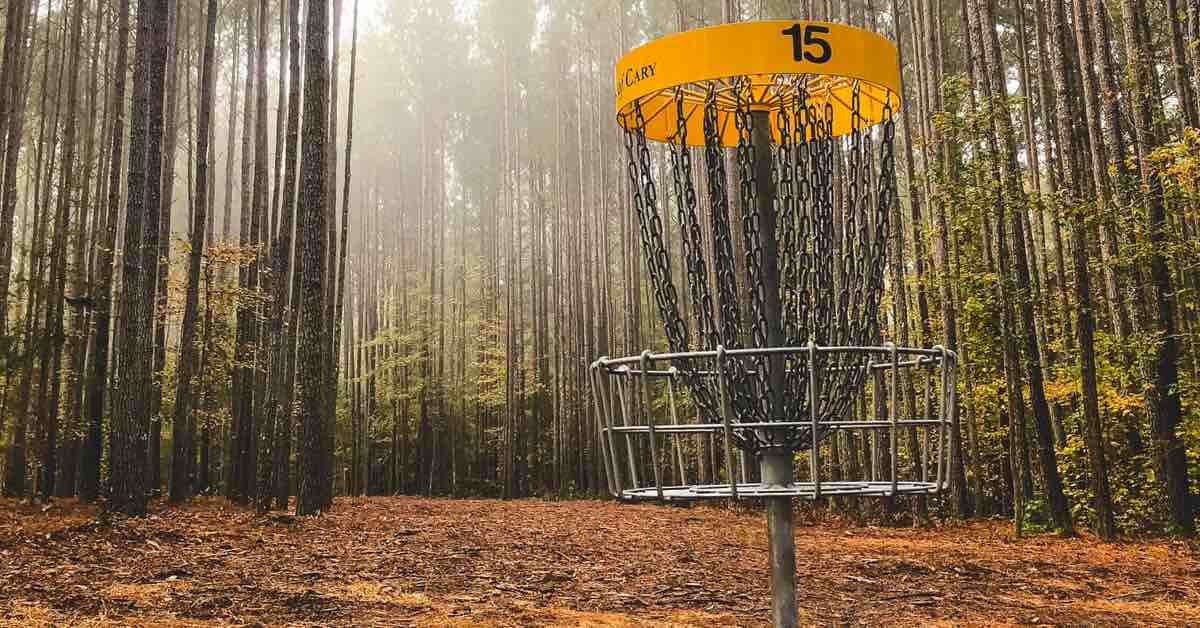 A disc golf basket with yellow band in a forest of spindly pines on a misty morning