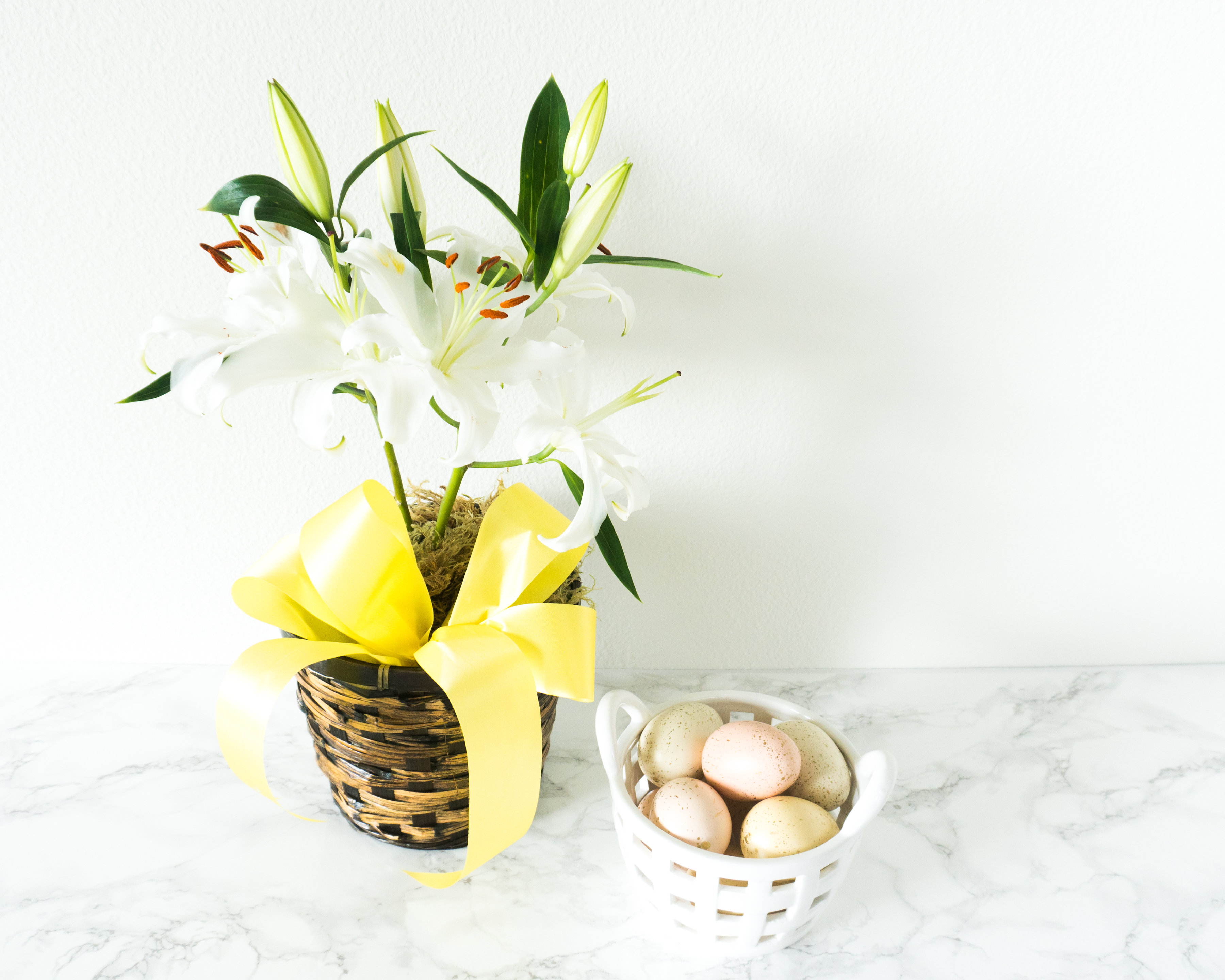 Learn about the Easter Lily Flower