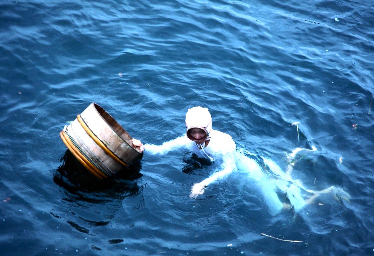 Ama female diver Japan