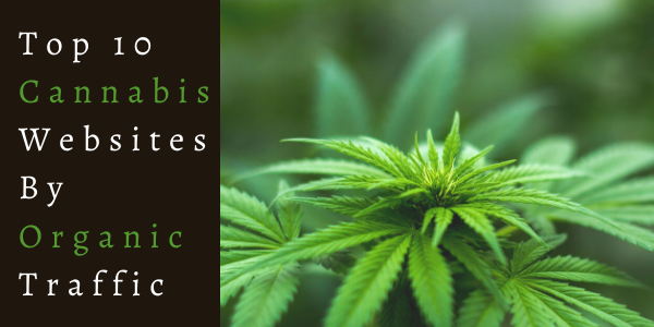 Top 10 Cannabis Websites By Organic Traffic