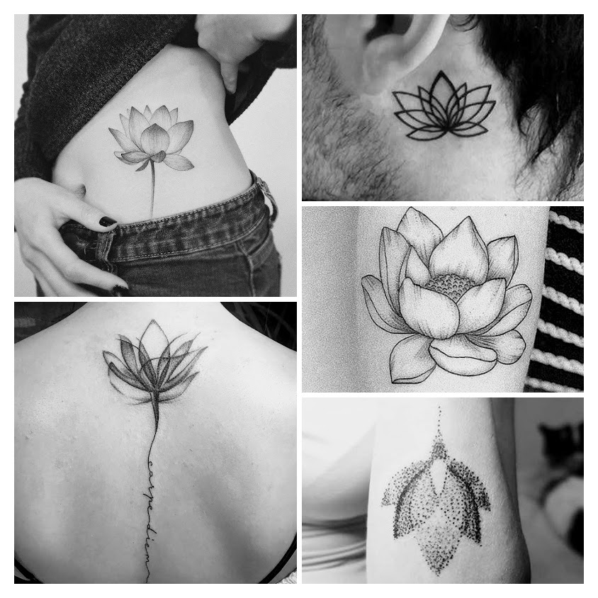 lotus flowers in several tattoo styles
