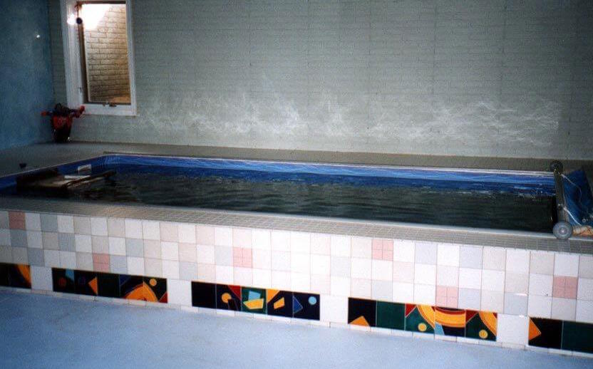 Tish's indoor Endless Pool used for aquatic therapy for her lupus