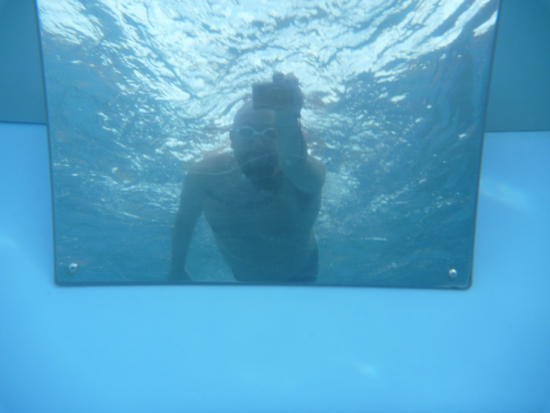 open water swimming blogger Rob D. using the underwater swim mirror in the Endless Pool
