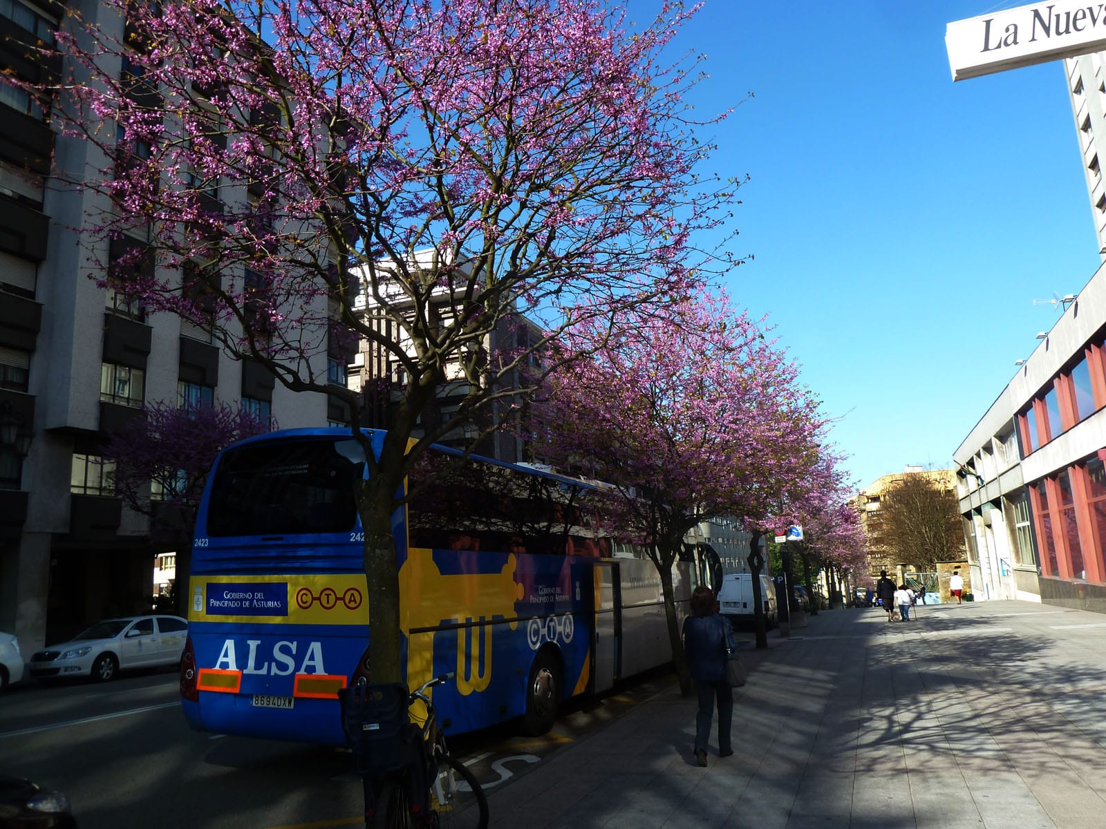 Coach buses are another good option for Spain transportation