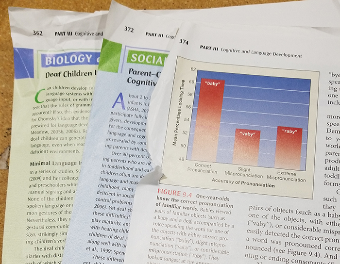 A photo of a textbook with torn pages