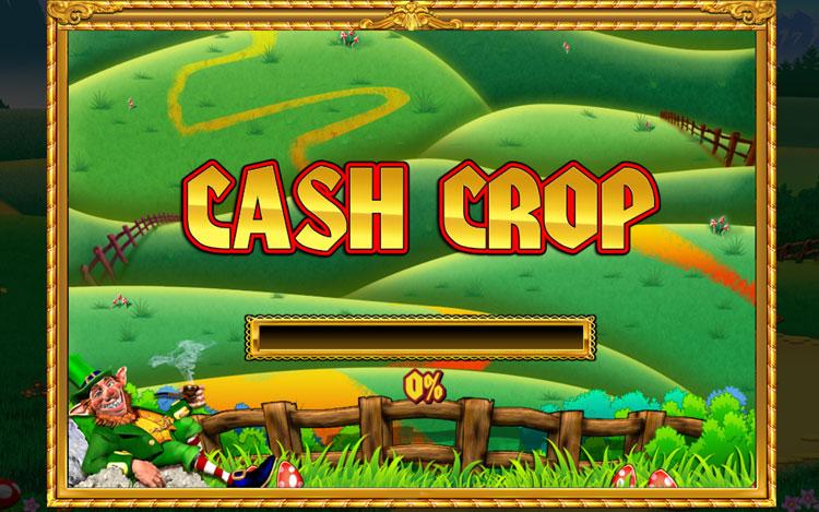 slingo-rainbow-riches-cash-crop.jpg